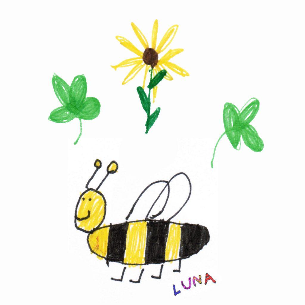 Foto eine Handzeichnung eines 4 Jährigen Kindes. Biene, Sonnenblume und zwei Kleeblätter